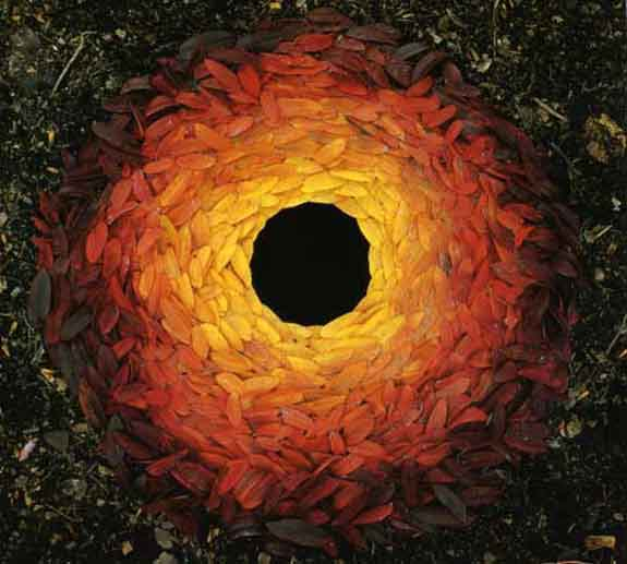 Rowan Leaves, Andrew Goldsworthy